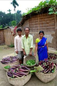 West Bengal, India - Small farmers show off their yield