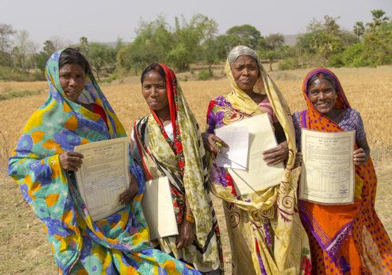 Musahar Gaya - Collective effort