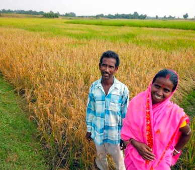Why restrictions on renting agricultural land in India must