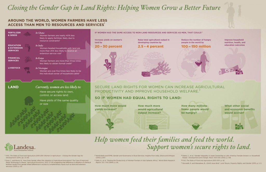 Women and land infographic